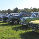 Club Cars at the Festival