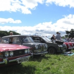 Club cars line up at Apley Farm